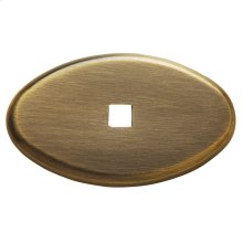 Satin Brass and Black Knob Back Plate