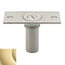 Non-Lacquered Brass Dustproof Strike