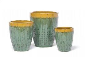 Aloe Desert Planter - Set of 3