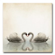 Swans 32x32 Giclee
