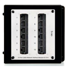 12-Port Cat 5e Network Interface Module