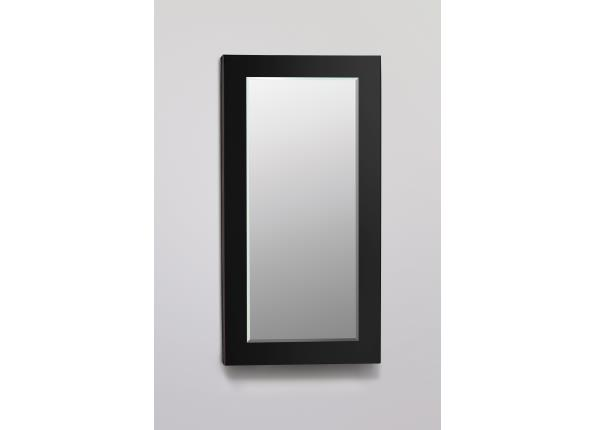 Decorative Framed Cabinet, Black Glass