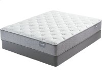Dickinson - Firm - Queen - Mattress only Product Image