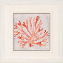 Watercolor Coral III