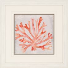 Watercolor Coral III