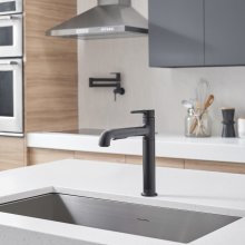 Studio S Pull-Out Kitchen Faucet  American Standard - Matte Black