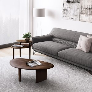Bdi Furniture1953 Coffee Table in Environmental