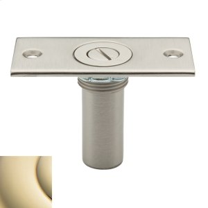 Lifetime Polished Brass Dustproof Strike Product Image