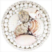 Sea Shell Drain