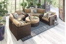 Spring Ridge - Beige/Brown 2 Piece Patio Set Product Image