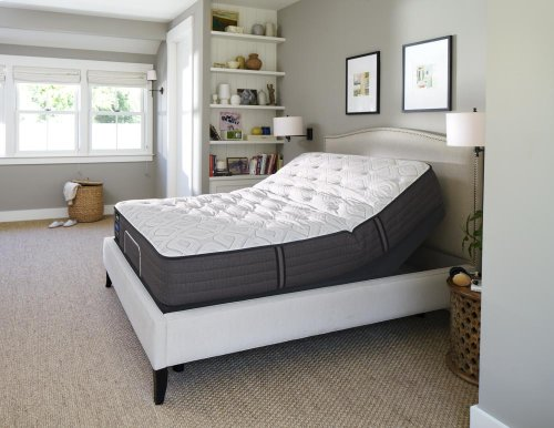 Response - Performance Collection - Surprise - Firm - Queen - Mattress Only