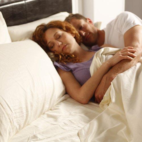 Sleep Plush + Beige 3-Piece Microfiber 500g Bed Sheet Set with Wrinkle Free Performance Fabric, Twin