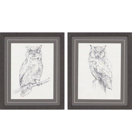 Owls Pk/2