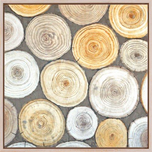 Tree Ring Study II