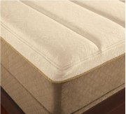 TEMPUR-Contour Collection - GrandBed - Queen Product Image