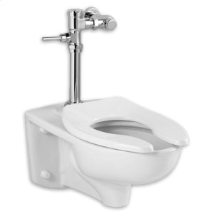 1.1 GPF Afwall Millennium System with Manual Flush Valve - White