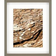 Macro Wood Slice II