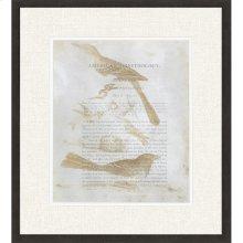 Ornithology III