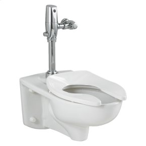 Afwall 1.6 gpf EverClean Toilet with Flush Valve System - White