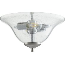 CLR/SEED LED BOWL -WH/STN
