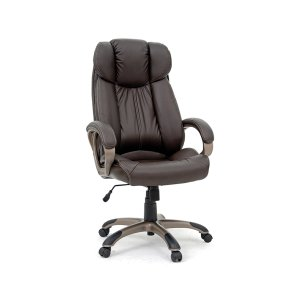 SauderDeluxe Leather Executive Chair