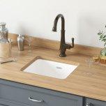 American StandardDelancey(R) 18 x 16 Single Bowl Cast Iron Kitchen Sink  American Standard - Brilliant White