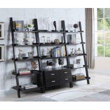 Contemporary Cappuccino Leaning Bookcase