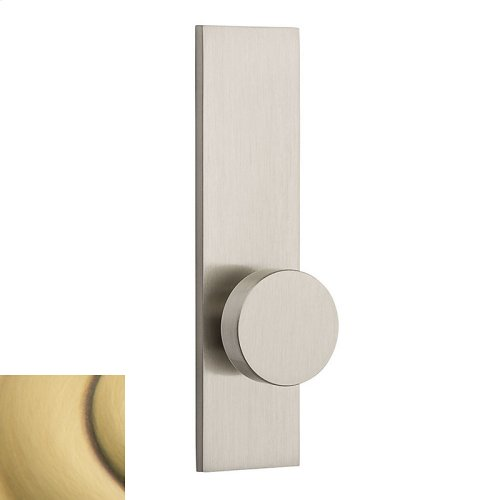 Satin Brass and Brown Contemporary K010 Knob Screen Door
