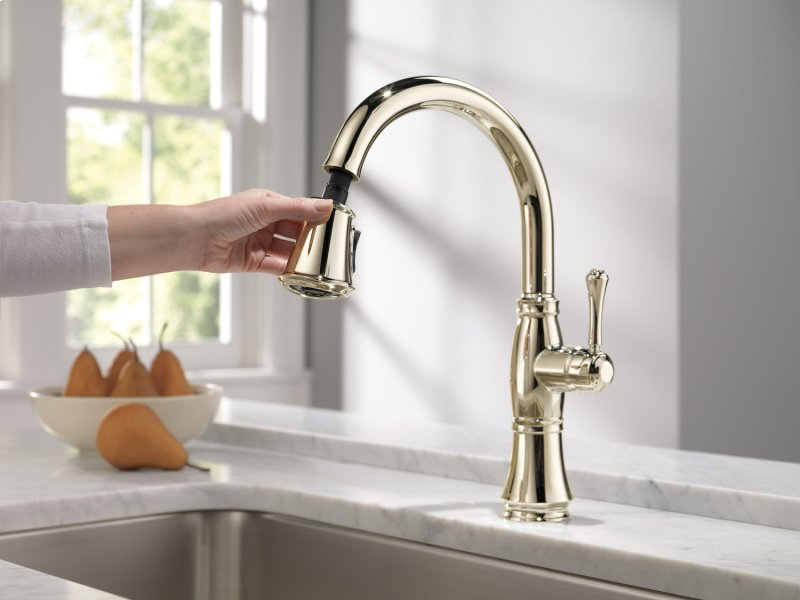 9197PNDST in Polished Nickel by Delta Faucet Company in ...