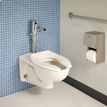 American StandardAfwall Millenium FloWise Elongated Toilet - White