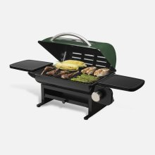Everyday Portable Gas Grill