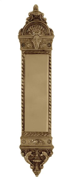 Nostalgic Warehouse - Small New Orleans Pushplate in Polished Brass