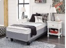 Mt Dana Firm - Blue/White 2 Piece Mattress Set Product Image