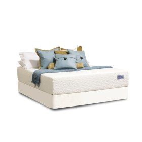 All-Natural Talalay Latex Collection - Beautiful All-Natural - Full