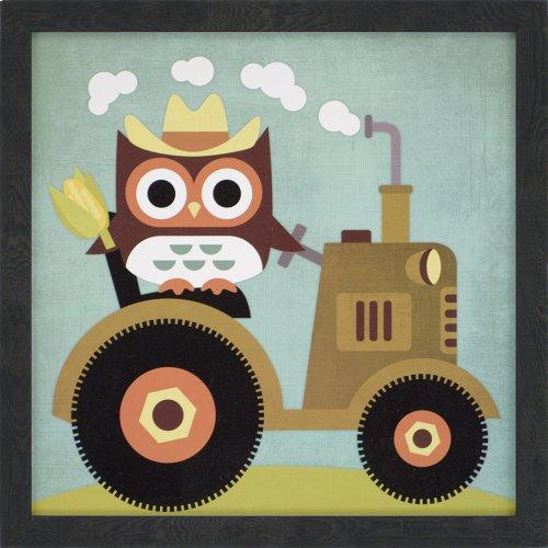 Owls Pk/6