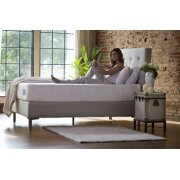 The Ultimate Collection - World's Best Bed - Queen Product Image