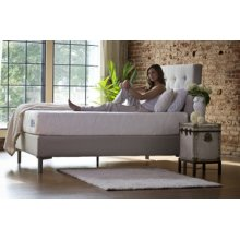 The Ultimate Collection - World's Best Bed