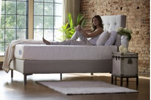 The Ultimate Collection - World's Best Bed - Twin XL