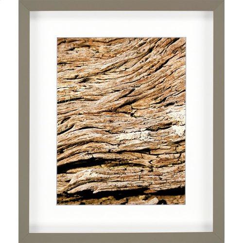 Macro Wood Slice I