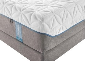 TEMPUR-Cloud Collection - TEMPUR-Cloud Elite - Split King