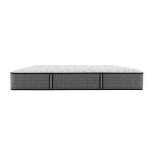Response - Performance Collection - Stonebrook - Cushion Firm - King