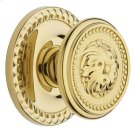 Lifetime Polished Brass 5050 Estate Knob Product Image