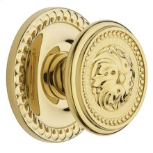 Lifetime Polished Brass 5050 Estate Knob