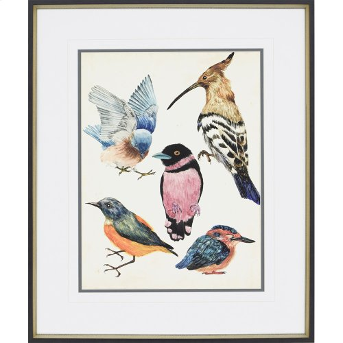Bird Collection I