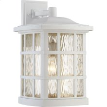 Stonington Outdoor Lantern in White Lustre