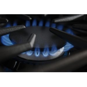 20K BTU Ultra Power Dual-Flame Burner