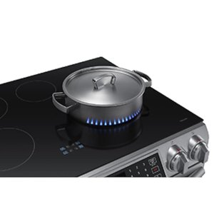 Induction Cooktop with Virtual Flame(TM)