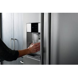 Exterior Water and Ice Dispenser