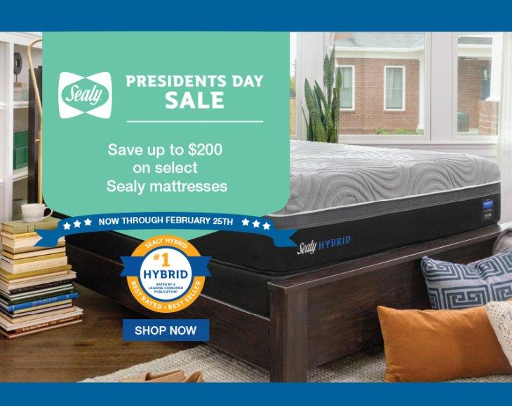 Sealy AdRocket Organic Presidents Day 2019