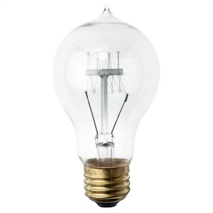 A19(with Tip On Top) Light Bulb  Clear Product Image